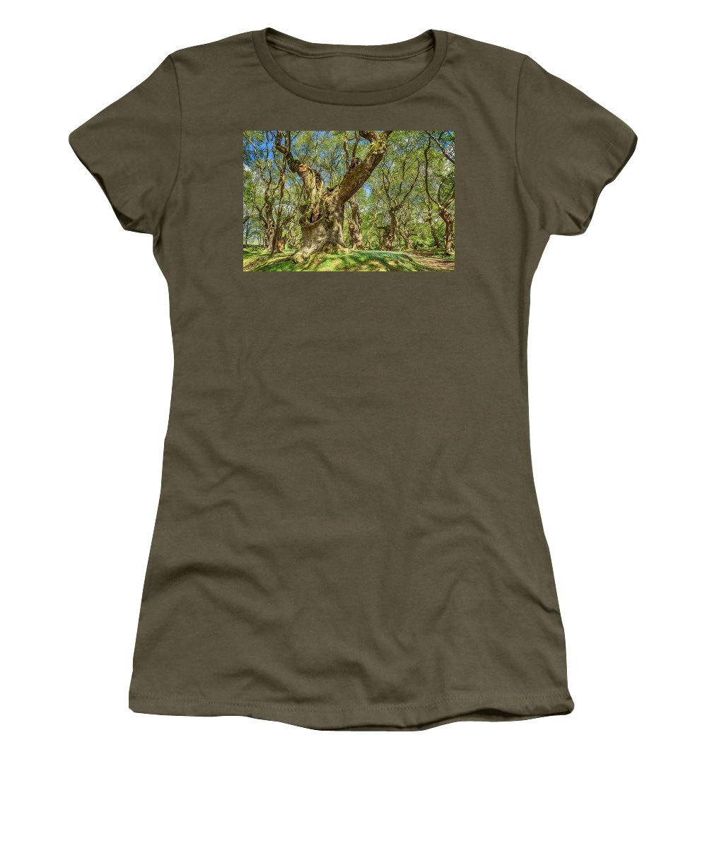 Planes Women's T-Shirt featuring the digital art Relaxing Planes Trees Arbor by Tsafreer Bernstein