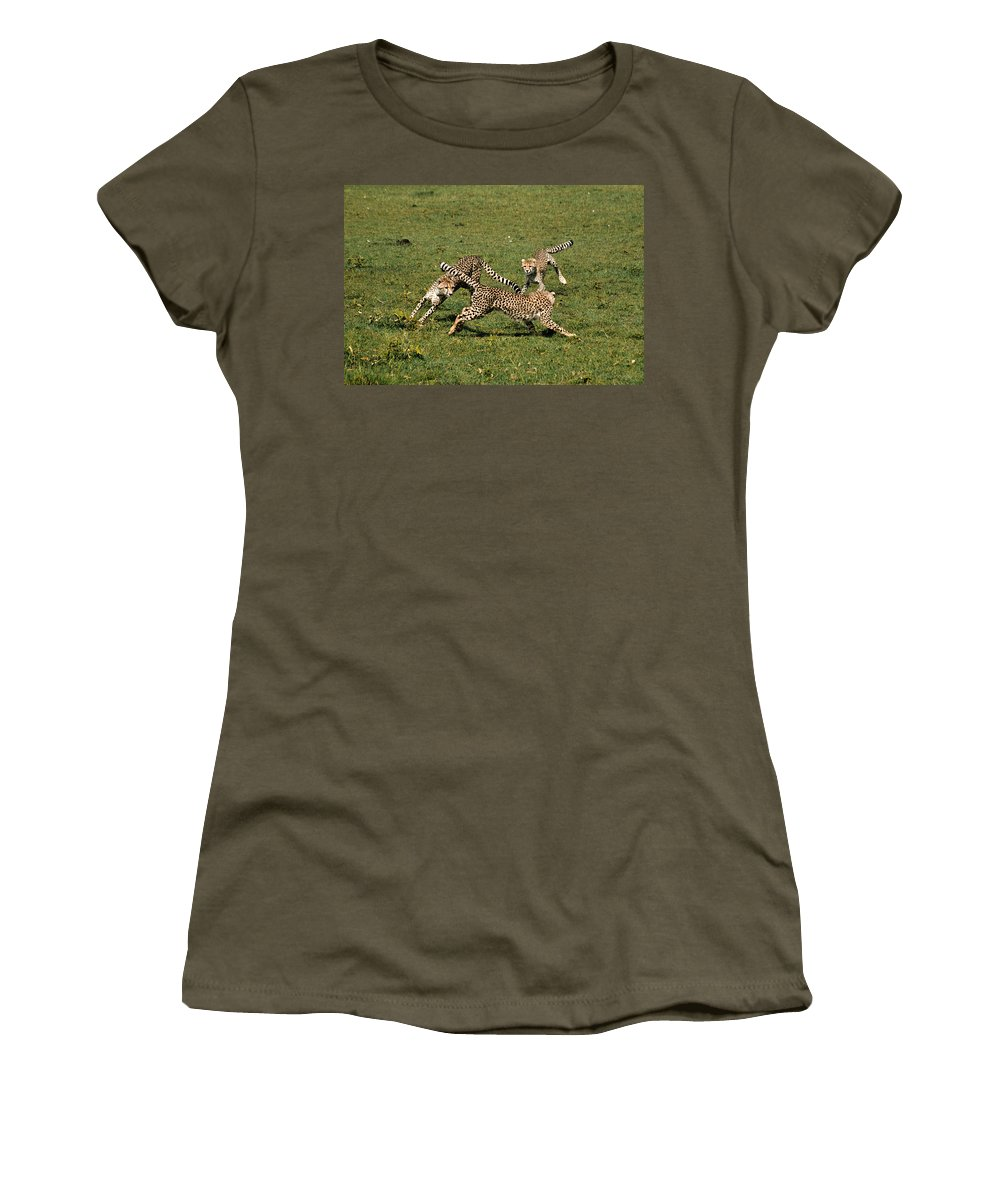 Africa Women's T-Shirt featuring the photograph Ring Around The Cheetahs by Michele Burgess