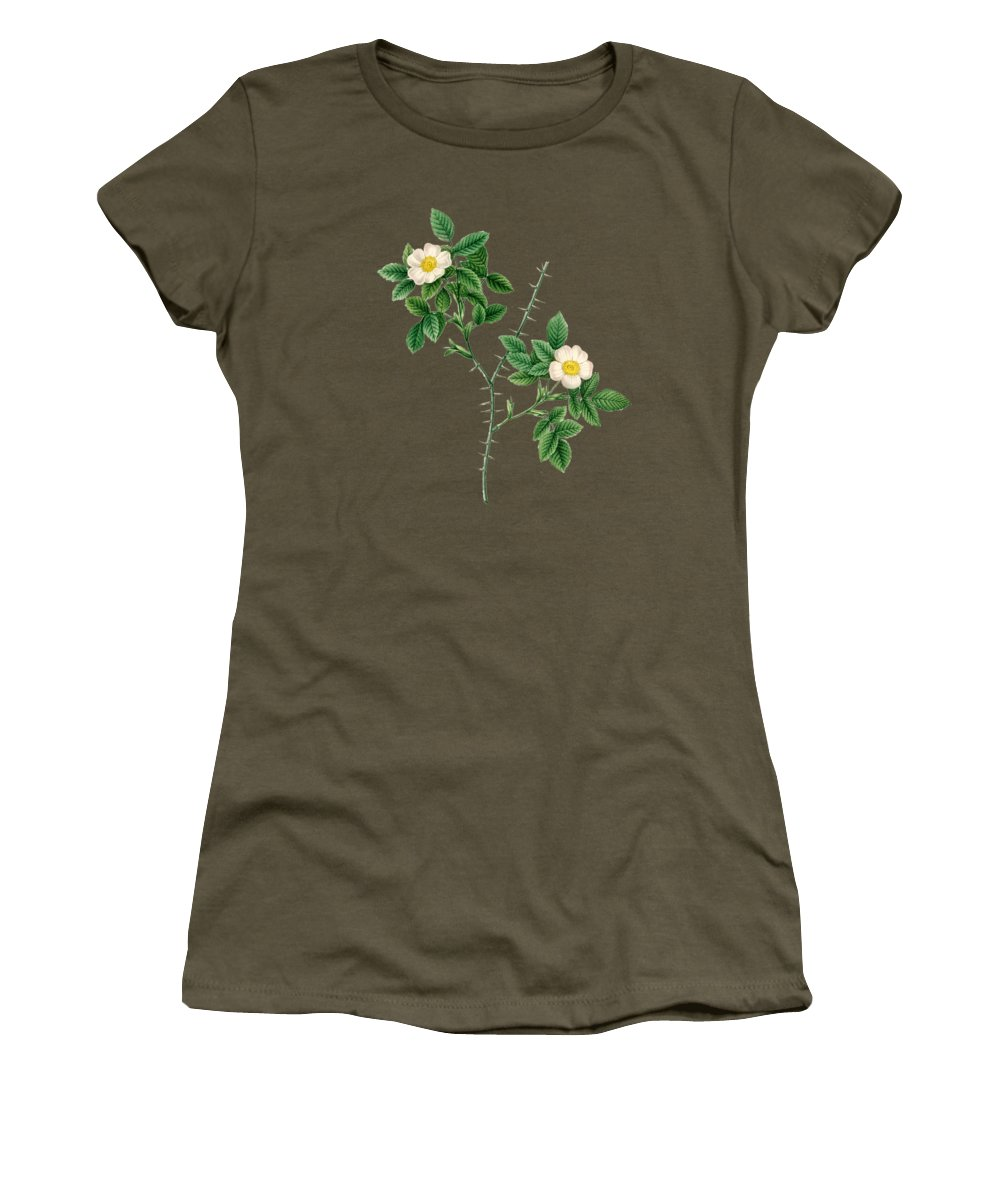 Rose Women's T-Shirt featuring the painting Rose145 by The one eyed Raven