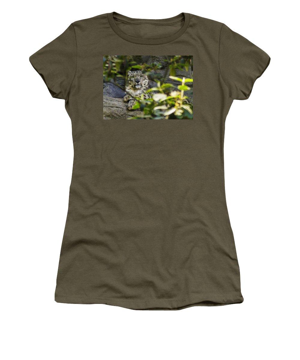 Leopard Women's T-Shirt featuring the photograph Snow Leopard by Nolan Taylor