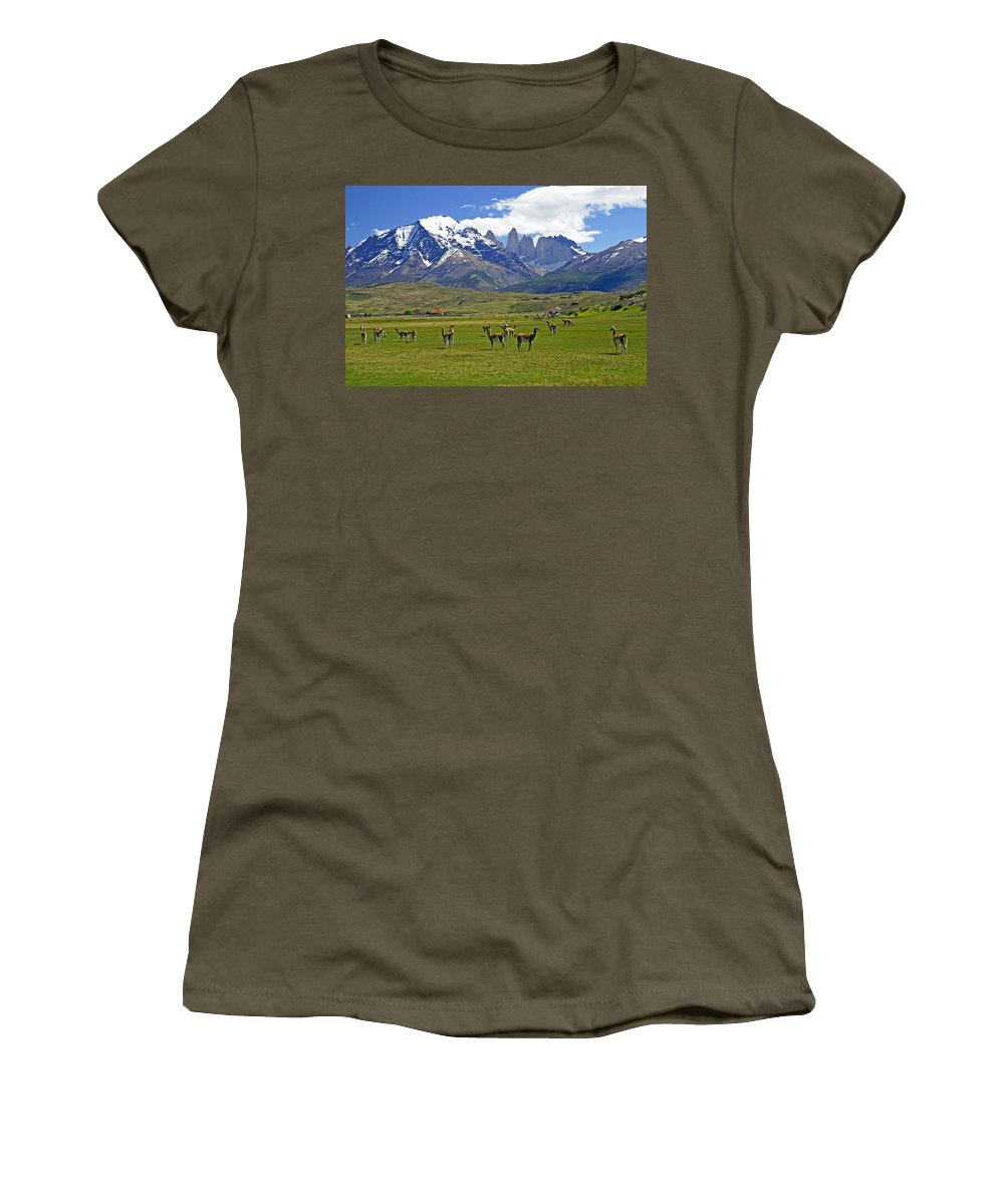Patagonia Women's T-Shirt featuring the photograph Springtime In Torres Del Paine by Michele Burgess