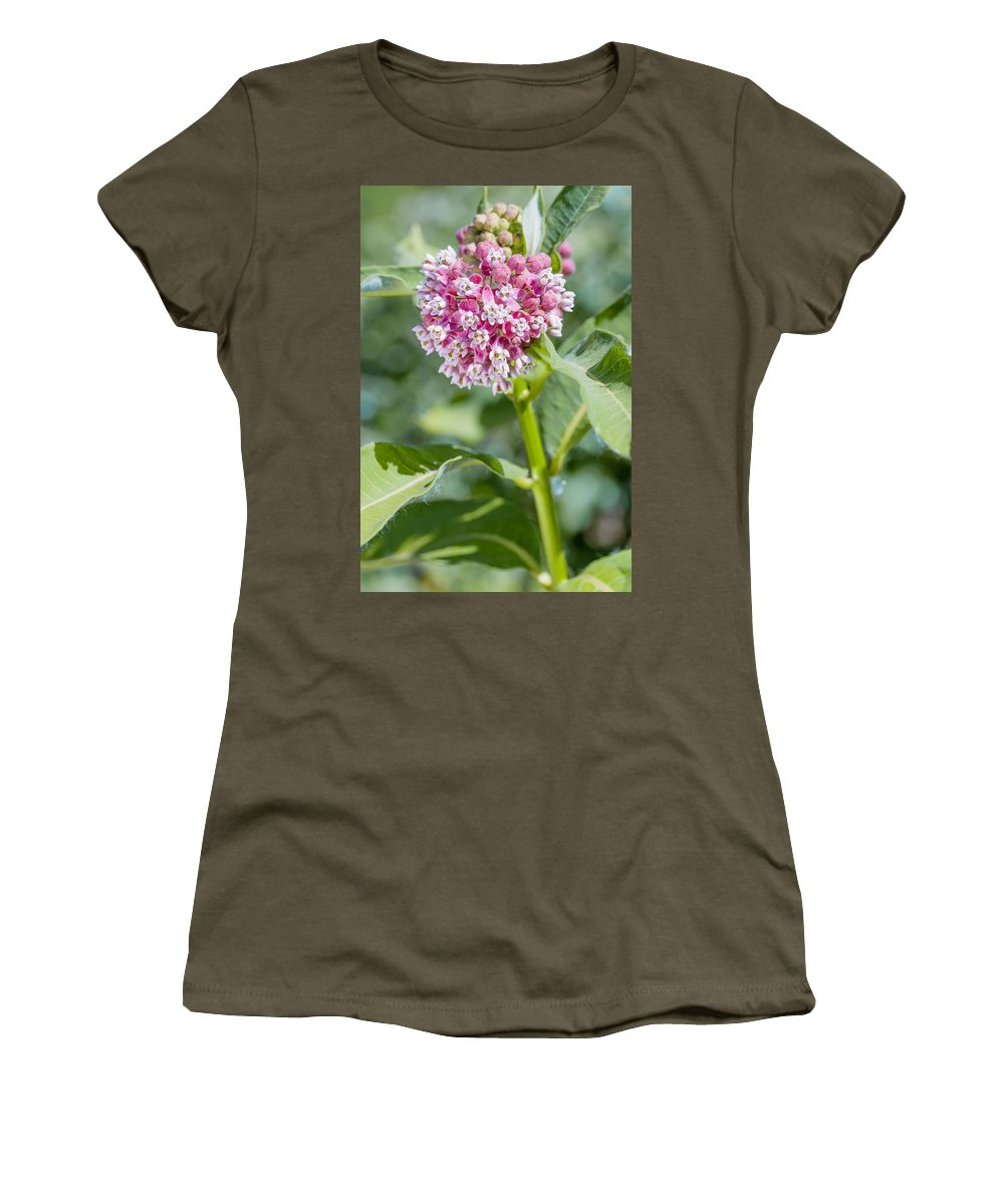 Incarnata Women's T-Shirt featuring the photograph Asclepias Flower by Alain De Maximy