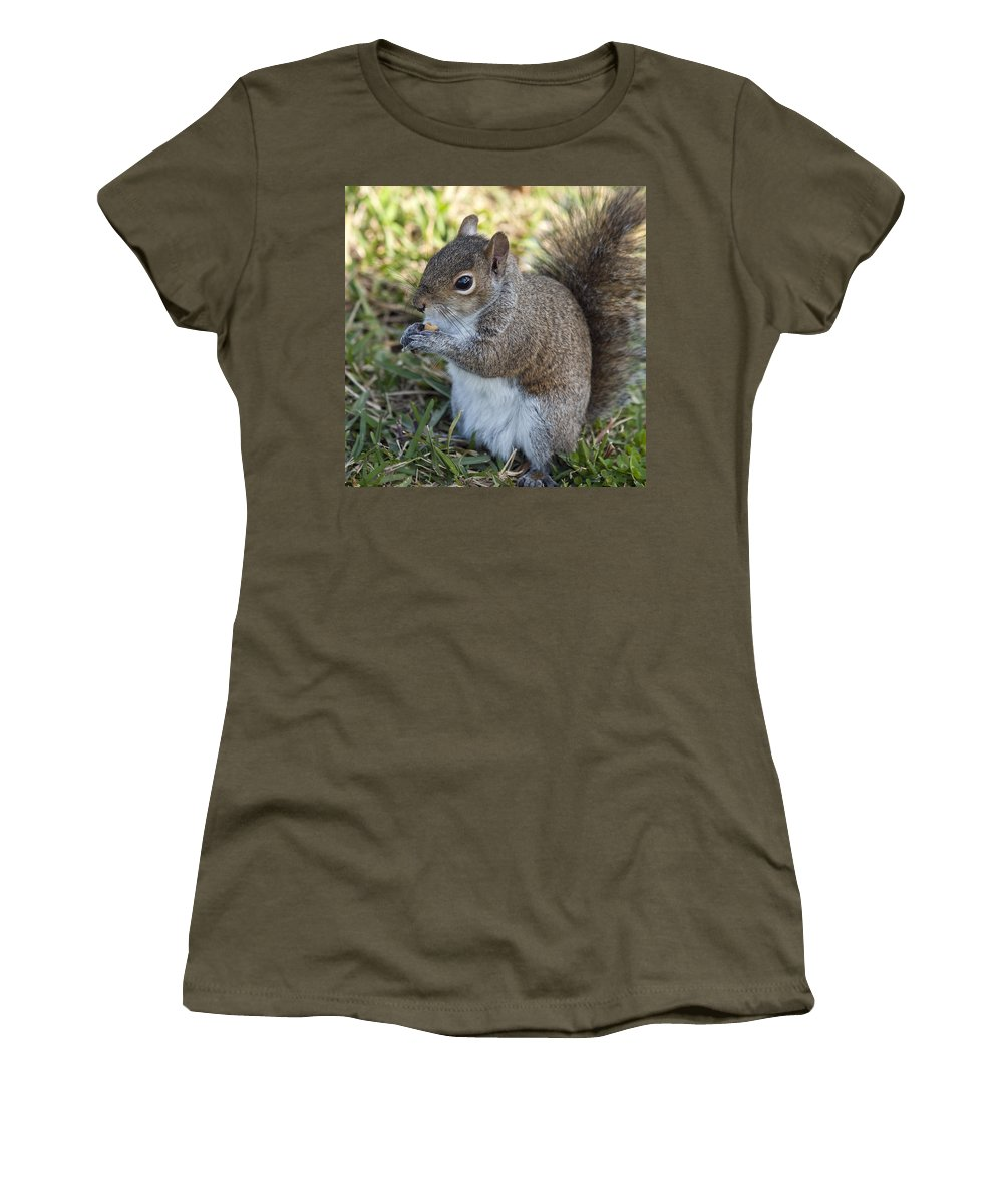 Squirrel Women's T-Shirt (Athletic Fit) featuring the photograph Eastern Gray Squirrel by Allan Hughes