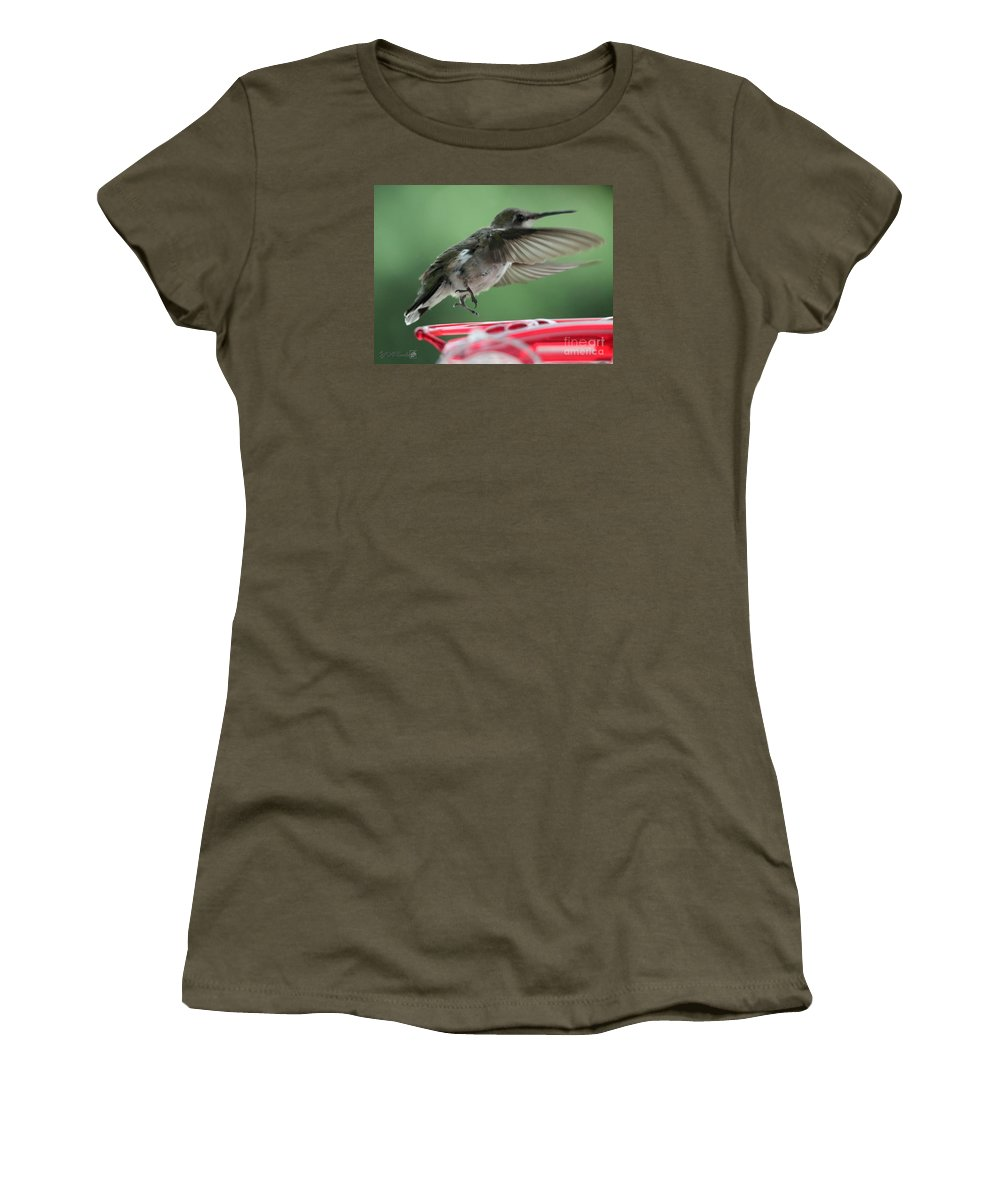 Mccombie Women's T-Shirt featuring the photograph Female Ruby-throated Hummingbird by J McCombie