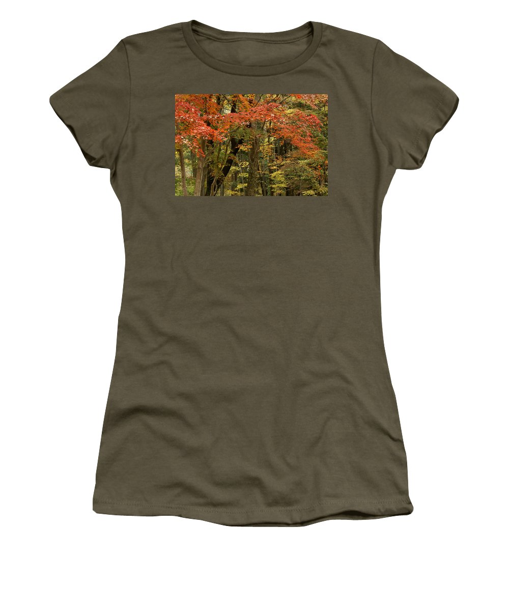 Autumn Women's T-Shirt featuring the photograph Forest In Autumn by Michele Burgess