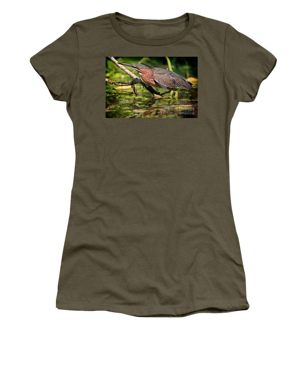 Green Heron Women's T-Shirt featuring the photograph Green Heron by Matt Suess
