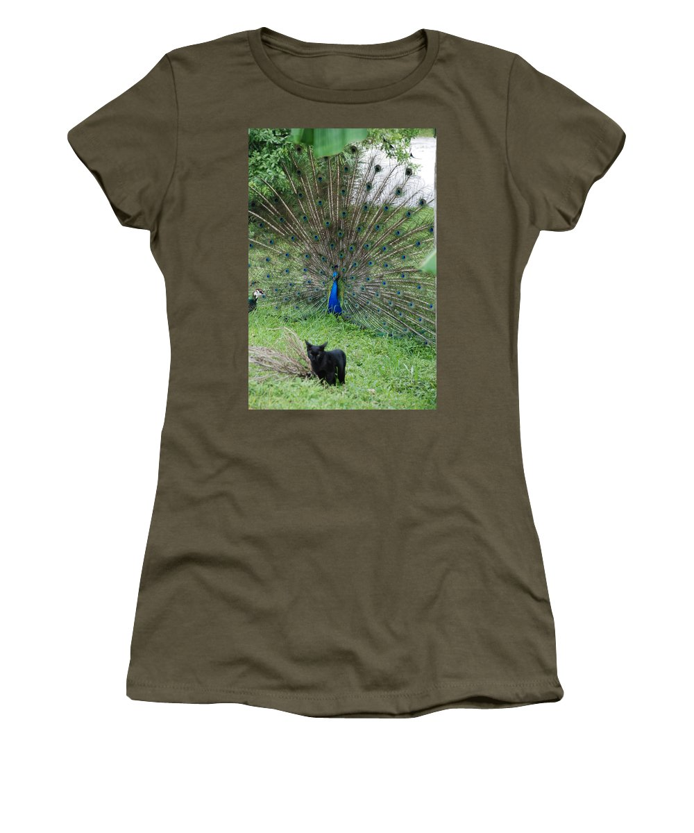 Animals Women's T-Shirt (Athletic Fit) featuring the photograph 2 Peacocks And A Black Pussy Cat by Rob Hans