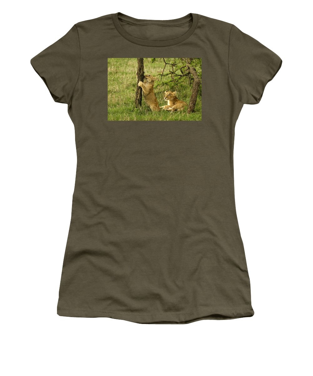 Lion Women's T-Shirt featuring the photograph Playtime by Michele Burgess