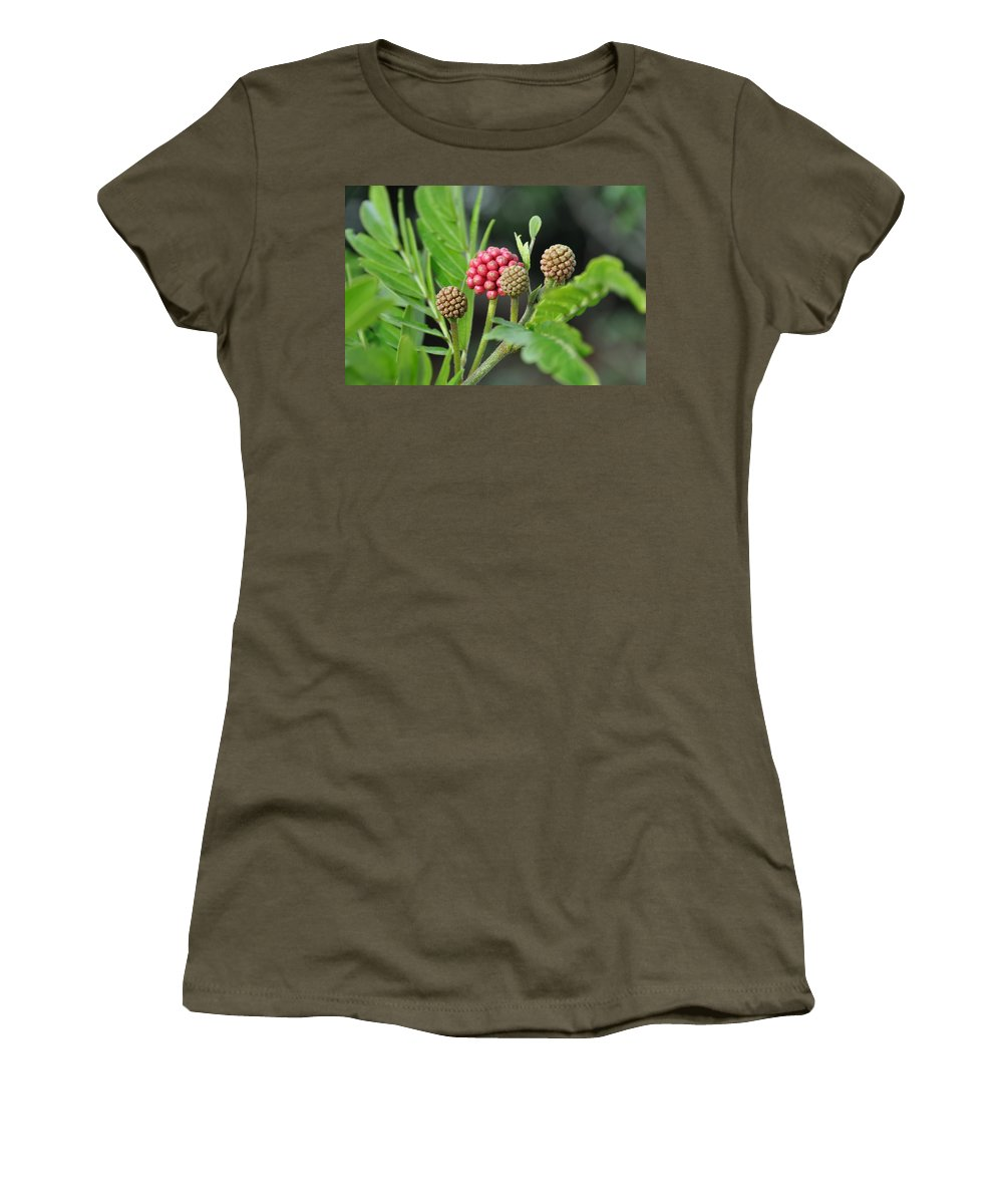 Flower Women's T-Shirt featuring the photograph 3 And 1 by Rich Bodane