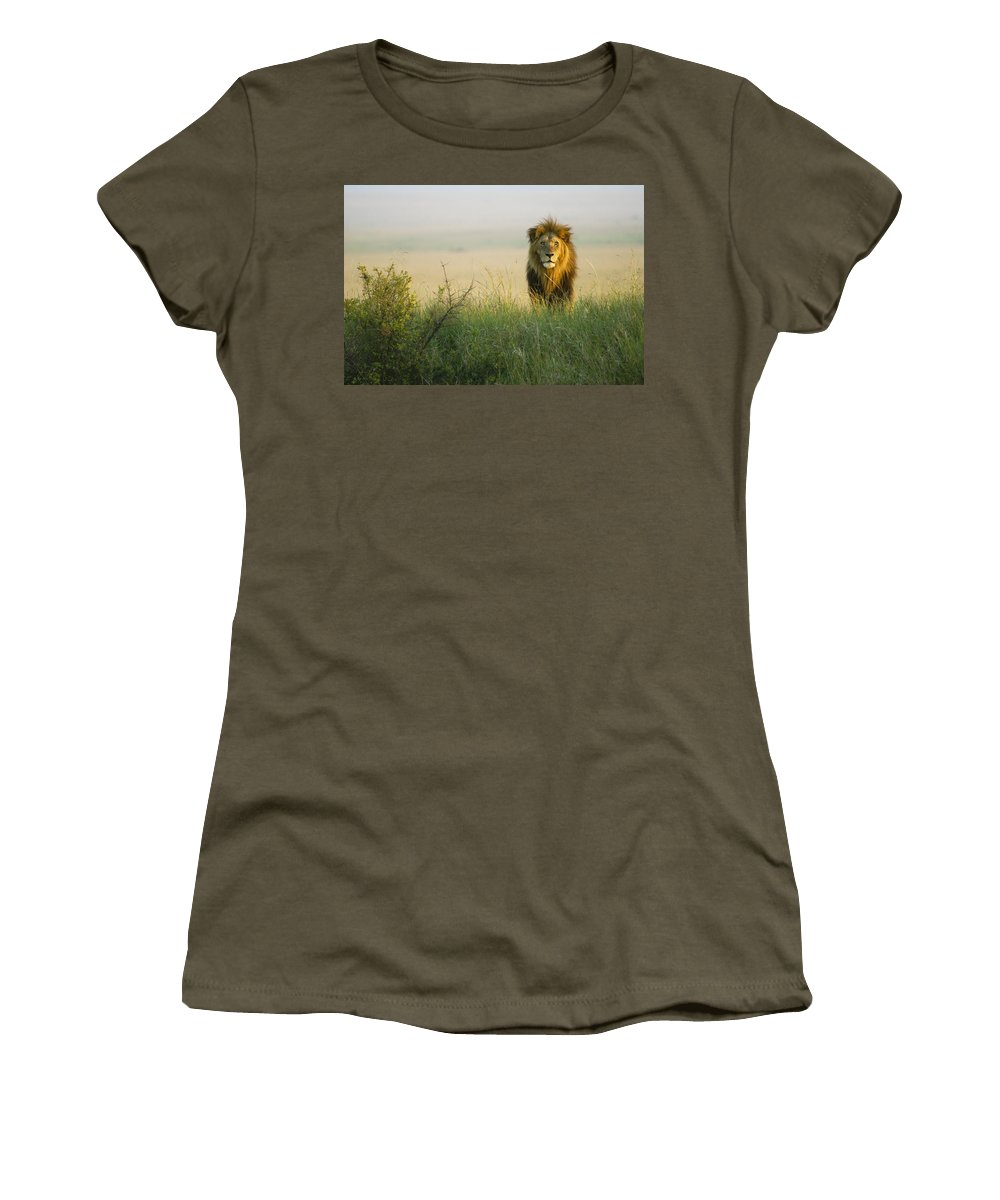 Lion Women's T-Shirt featuring the photograph King Of The Savanna by Michele Burgess