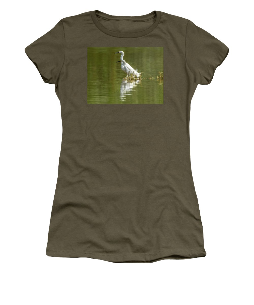 Snowy Women's T-Shirt (Athletic Fit) featuring the photograph Snowy Egrets by Tam Ryan
