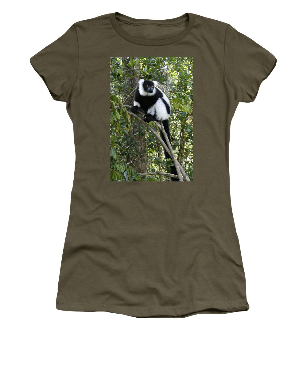 Madagascar Women's T-Shirt featuring the photograph Black And White Ruffed Lemur by Michele Burgess