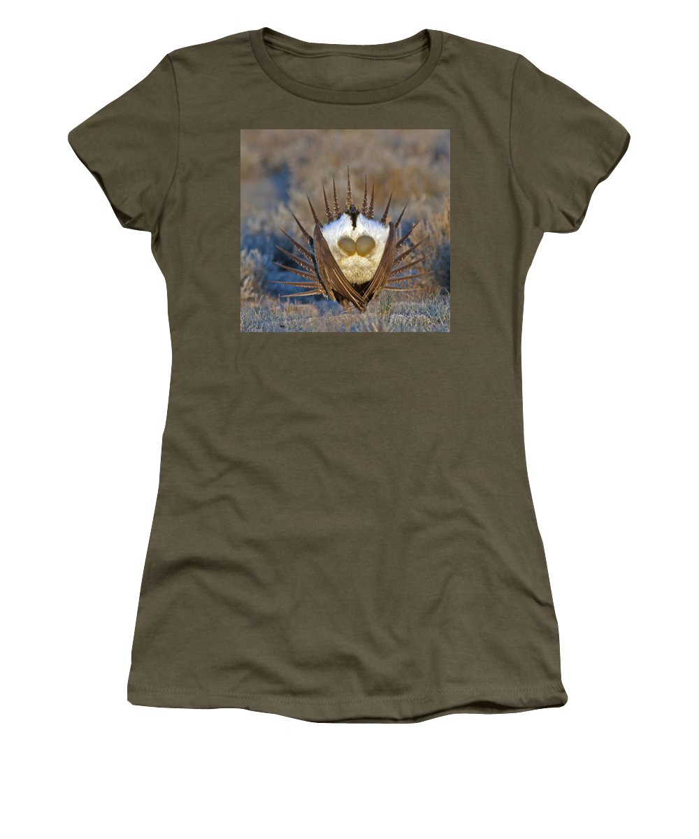 Greater Sage-grouse Women's T-Shirt featuring the photograph Greater Sage-grouse by Gary Wing
