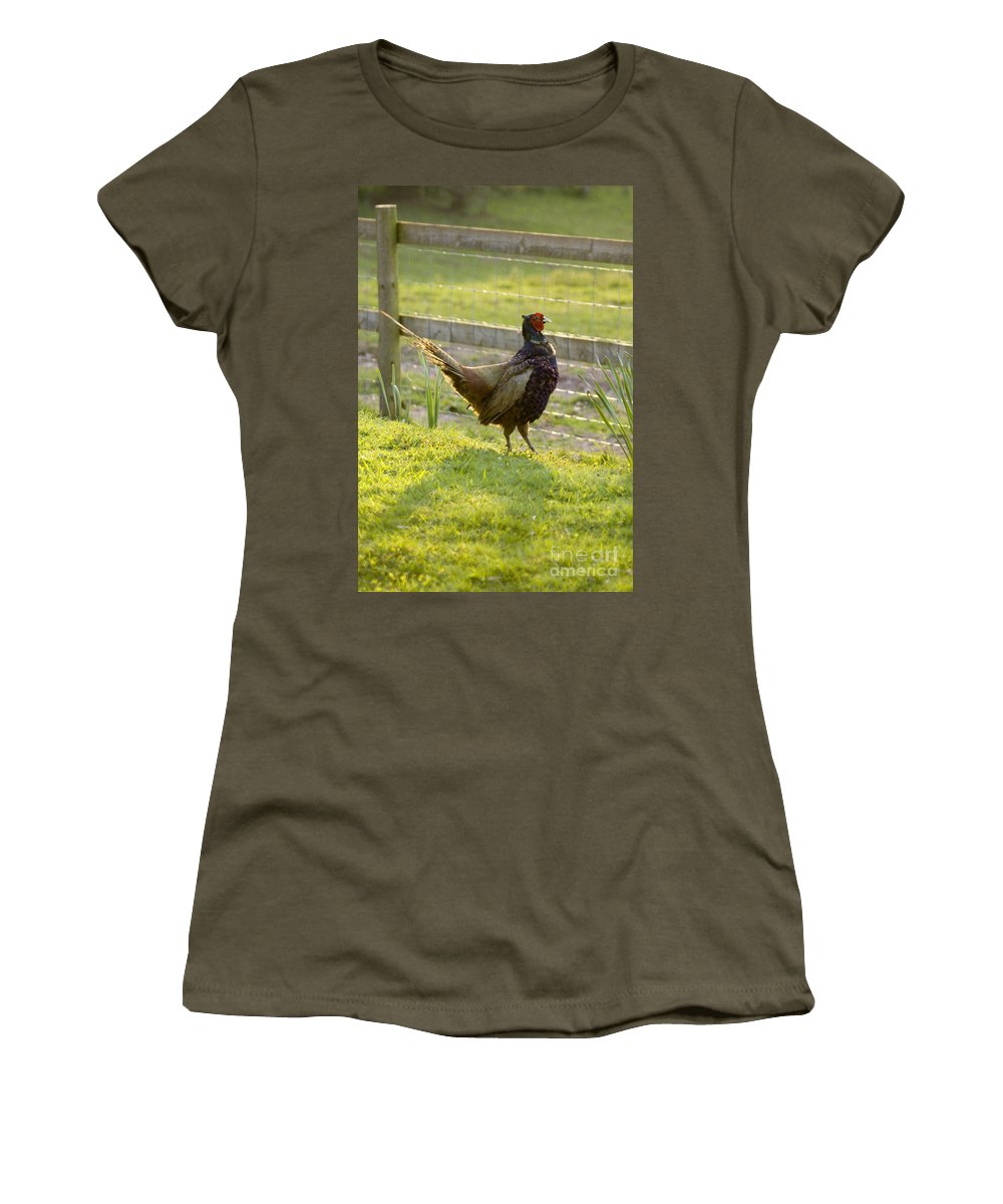 Pheasant Women's T-Shirt (Athletic Fit) featuring the photograph Mr Pheasant by Angel Ciesniarska