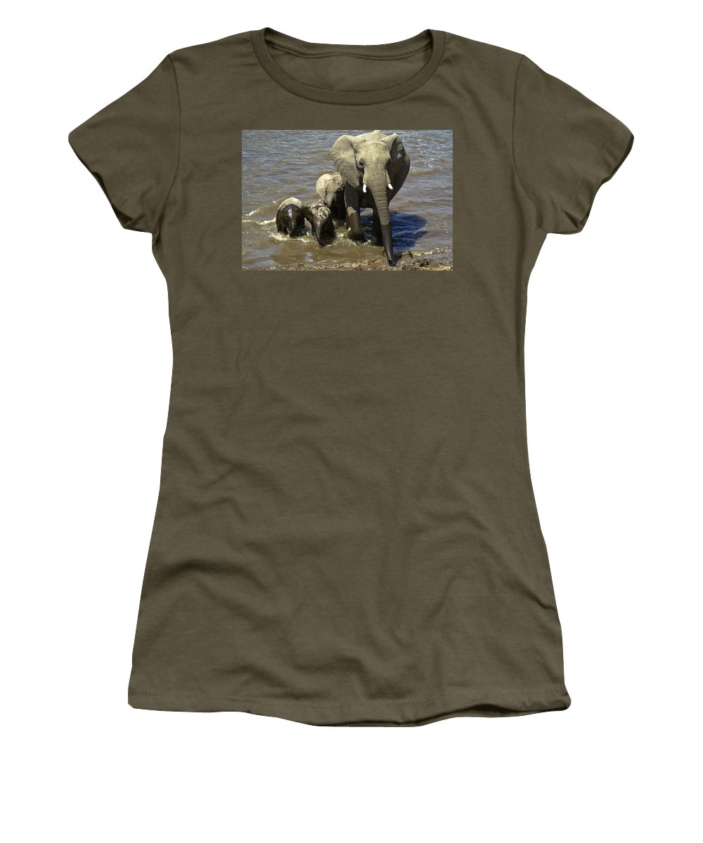 Africa Women's T-Shirt featuring the photograph River Crossing by Michele Burgess