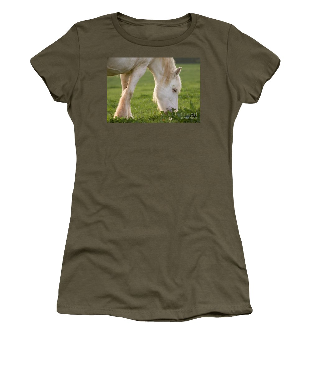 Horse Women's T-Shirt featuring the photograph White Horse by Angel Ciesniarska