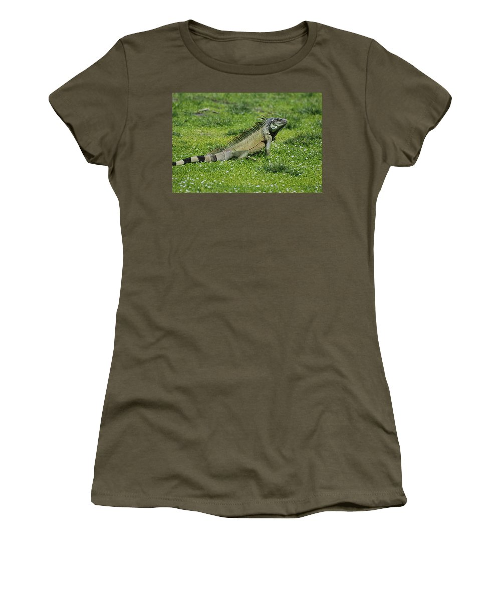 Macro Women's T-Shirt (Athletic Fit) featuring the photograph I Iguana by Rob Hans