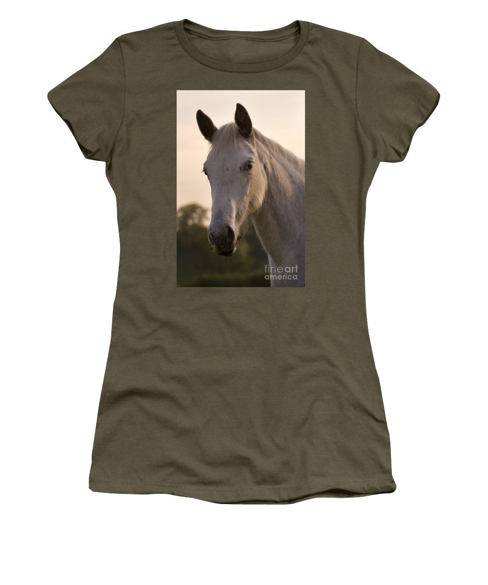 Horse Women's T-Shirt featuring the photograph The Horse Portrait by Angel Ciesniarska
