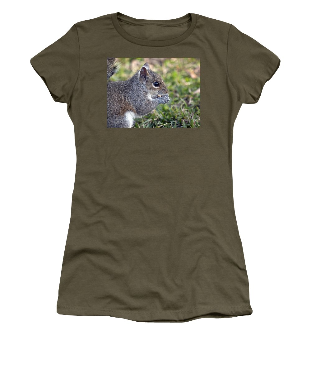 Squirrel Women's T-Shirt featuring the photograph Eastern Gray Squirrel by Allan Hughes