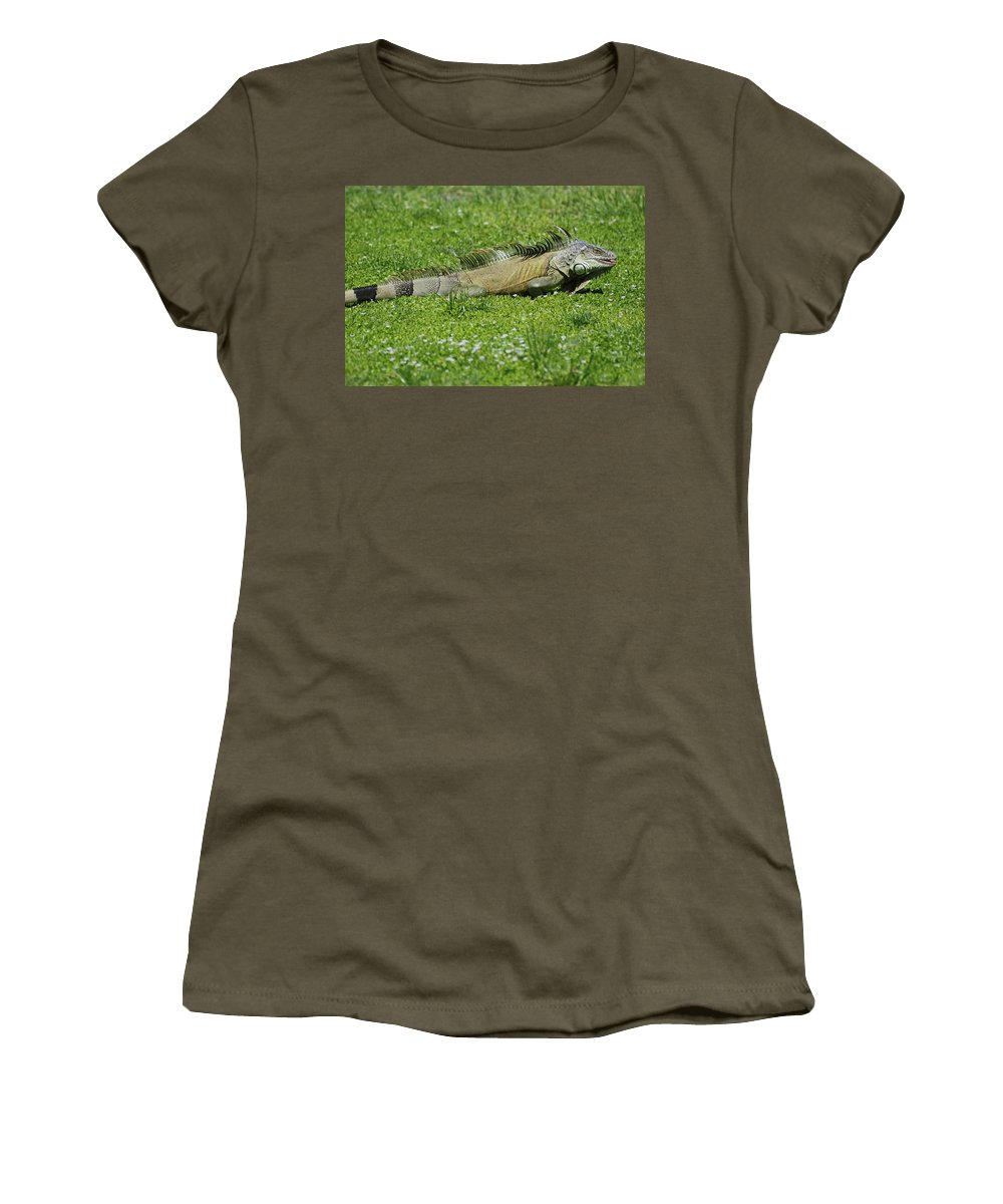 Macro Women's T-Shirt featuring the photograph I Iguana by Rob Hans