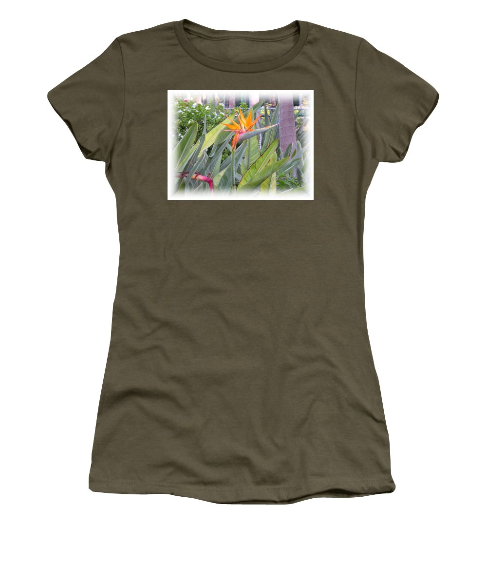 Plant Women's T-Shirt featuring the photograph A Bird In Paradise by Maria Bonnier-Perez
