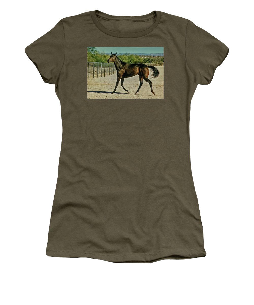 Horse Women's T-Shirt (Athletic Fit) featuring the photograph A Brisk Paddock Romp by Elizabeth Hershkowitz