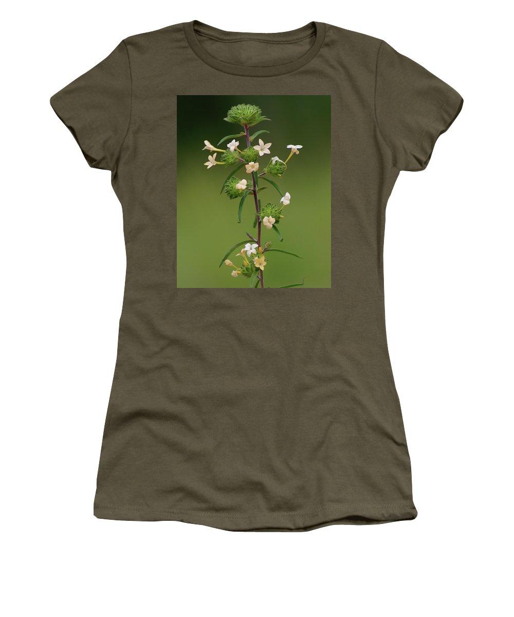 Flowers Women's T-Shirt featuring the photograph A Flower Tower by Ben Upham III