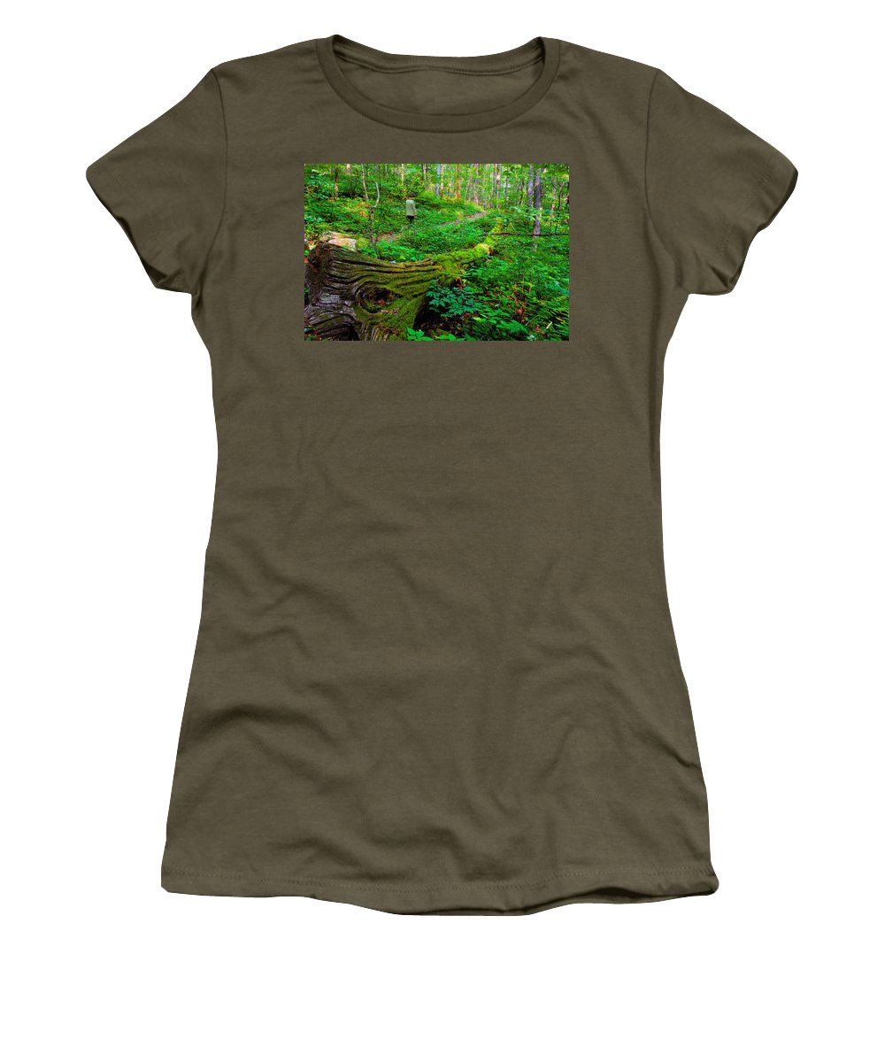 Hiking Women's T-Shirt featuring the painting A Forest Stroll by David Lee Thompson