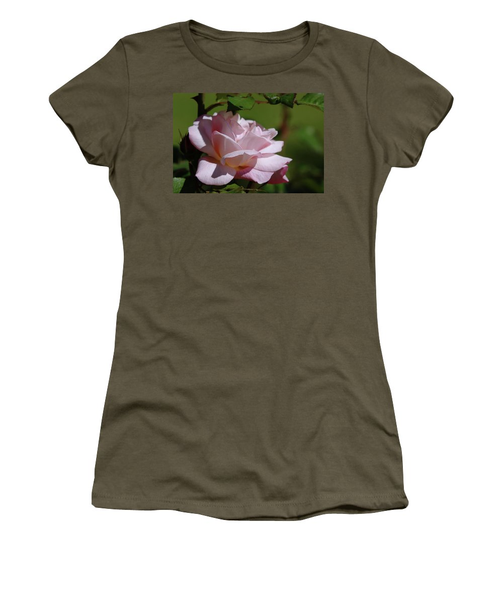 Roses Women's T-Shirt (Athletic Fit) featuring the photograph A Pink Rose by Jeff Swan