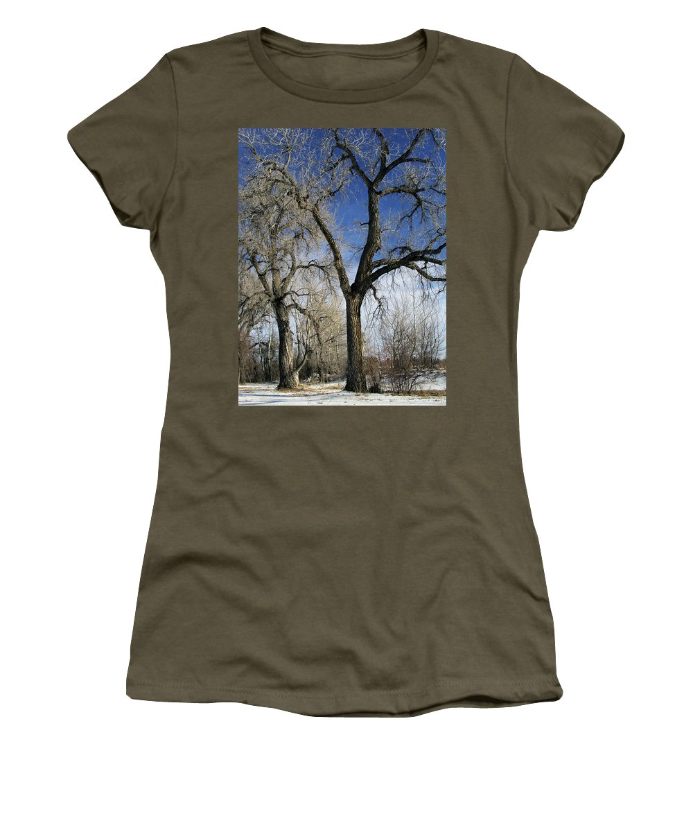 Tree Women's T-Shirt featuring the photograph A Winter Kiss by Angelina Vick