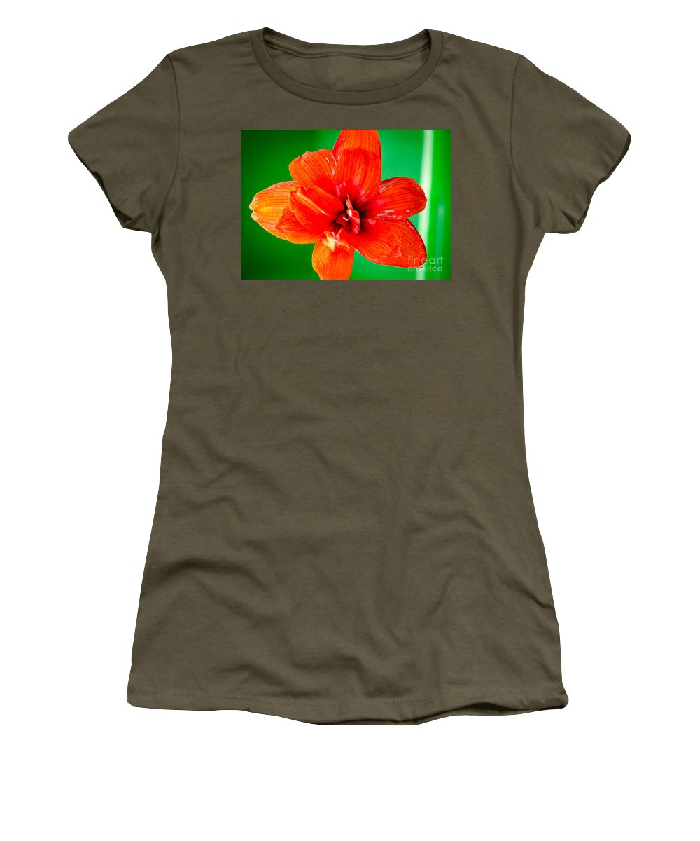 Amaryllis Women's T-Shirt featuring the photograph Amaryllis Contrast Orange Amaryllis Flower Appearing To Float Above A Deep Green Background by Andy Smy