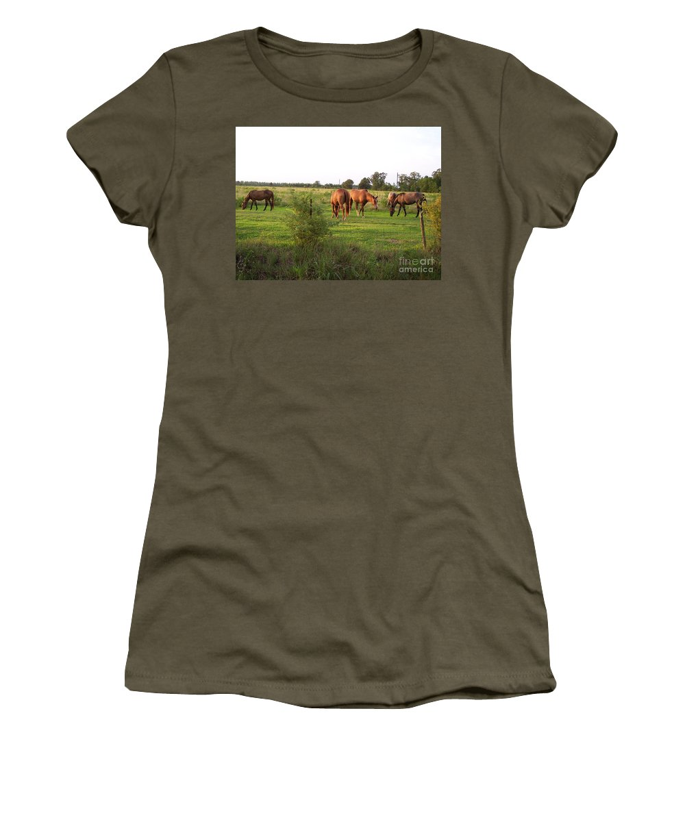Horse Women's T-Shirt featuring the photograph An Afternoon With Friends by Brandy Woods