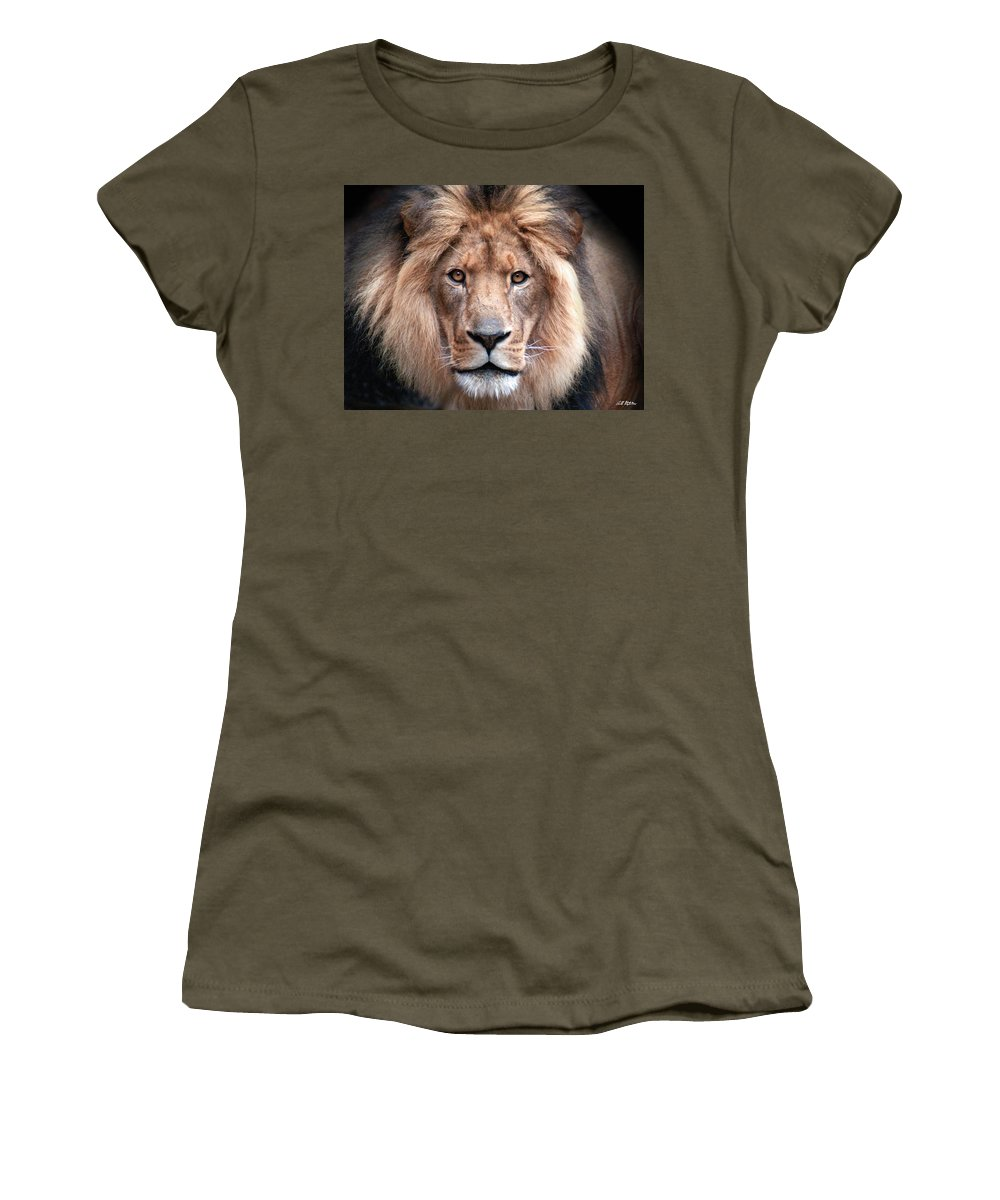 Lion Women's T-Shirt featuring the photograph Angry by Bill Stephens