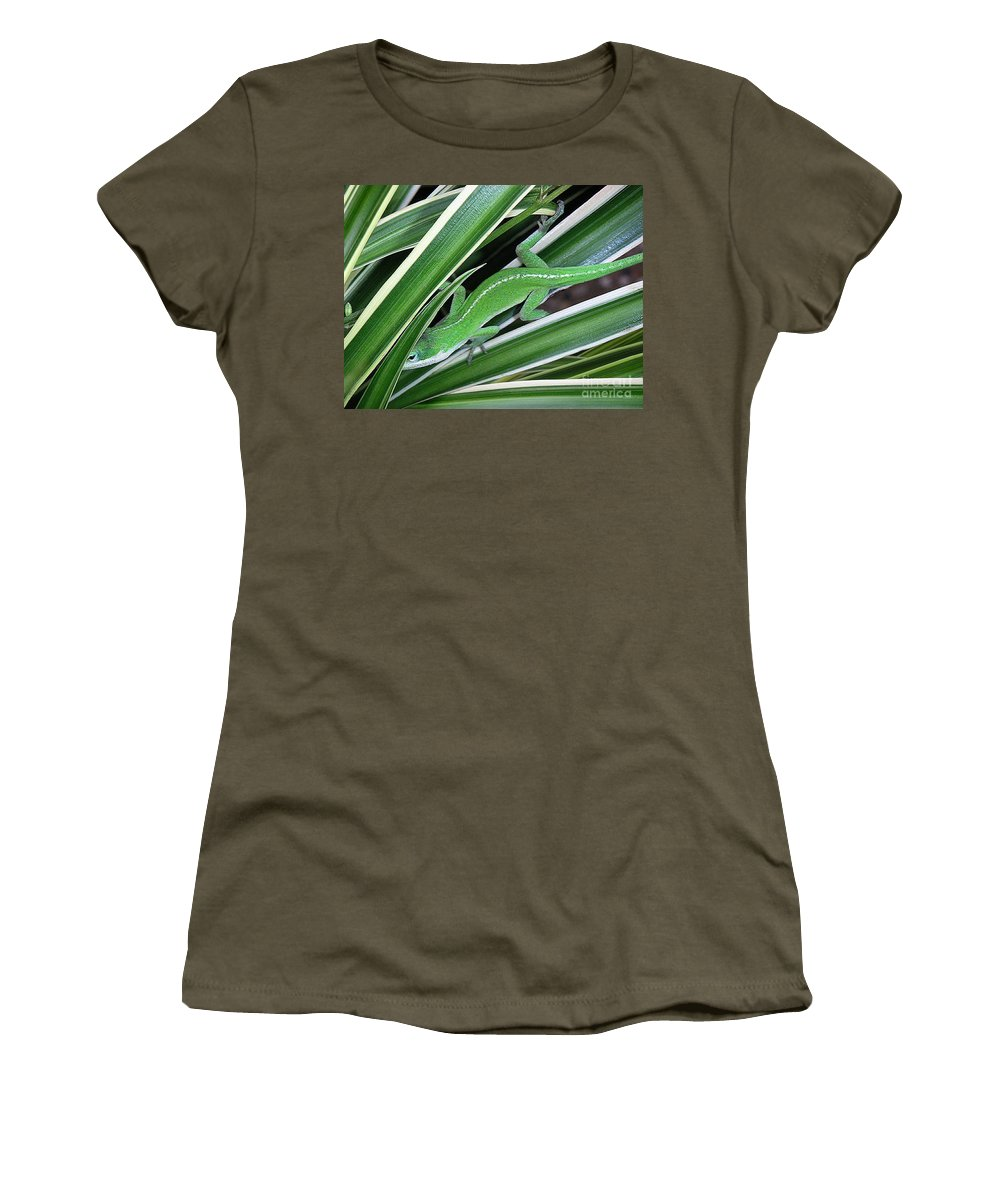 Nature Women's T-Shirt (Athletic Fit) featuring the photograph Anole Hiding In Spider Plant by Lucyna A M Green