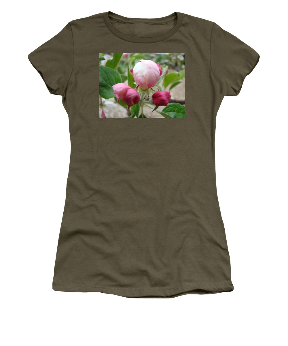 Apple Women's T-Shirt featuring the photograph Apple Blossom Buds Art Prints Spring Baslee Troutman by Baslee Troutman