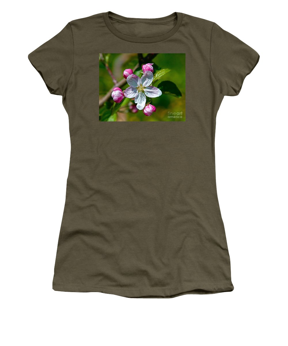 Flower Women's T-Shirt (Athletic Fit) featuring the photograph Apple Blossom by Robert Pearson