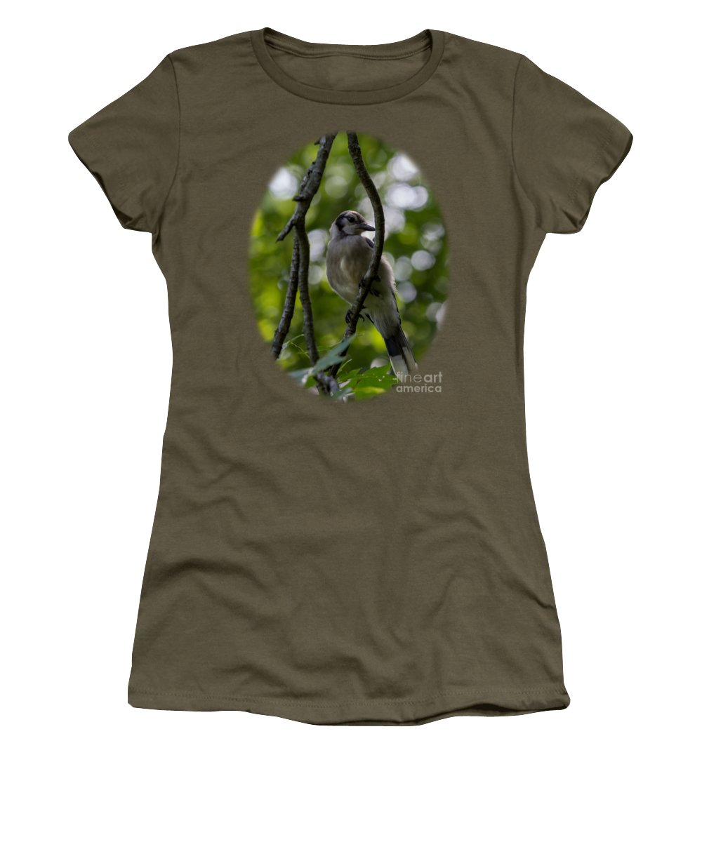 Blue Jay Photographs Women's T-Shirts