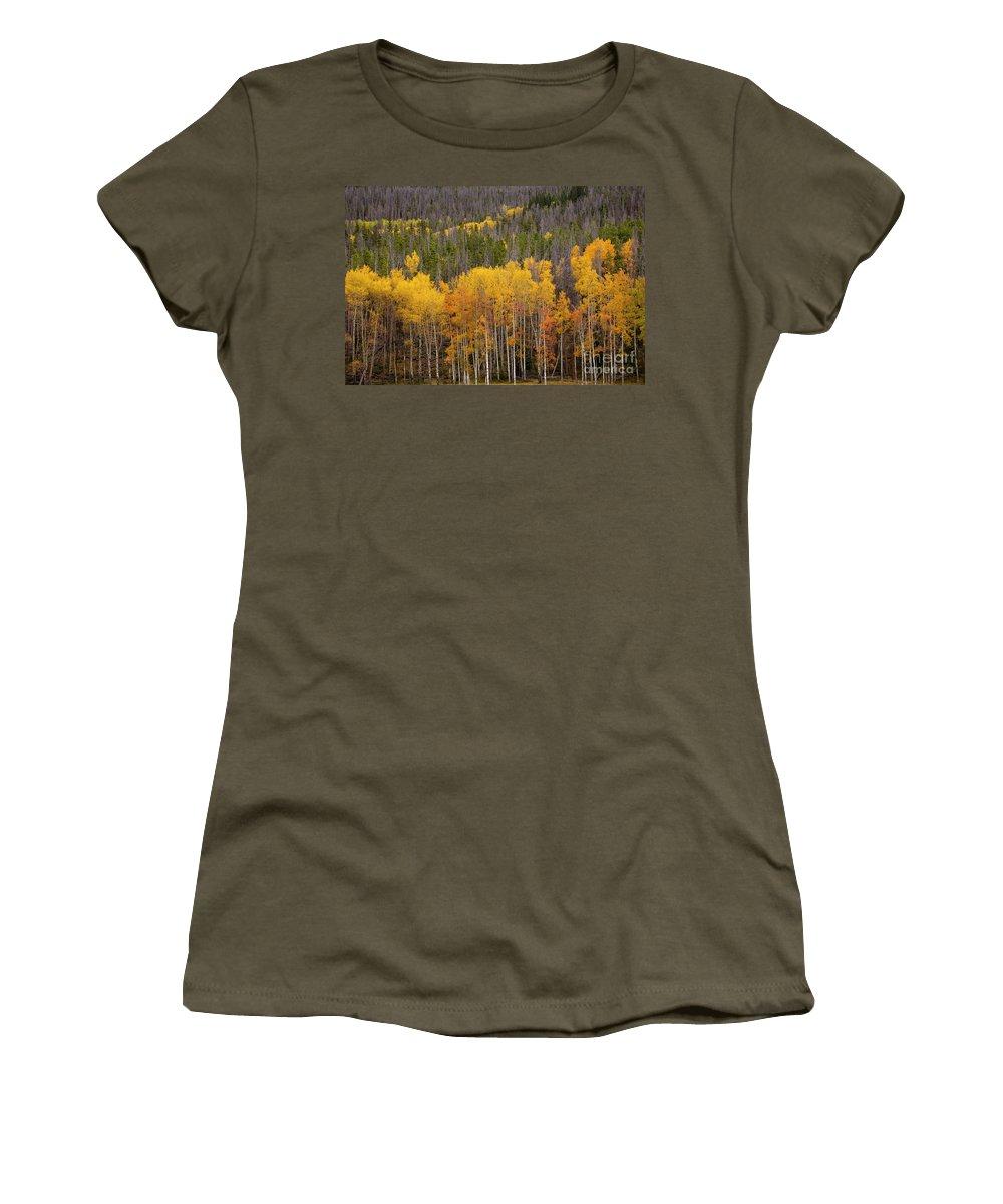Aspens Women's T-Shirt featuring the photograph Aspen Grove by Timothy Johnson