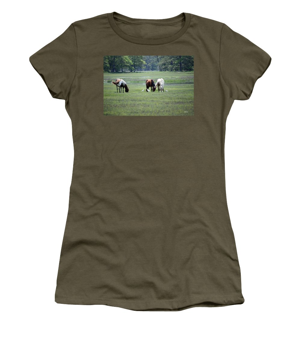 Maryland Women's T-Shirt featuring the photograph Assateague Island - Wild Ponies And Their Buddies by Ronald Reid