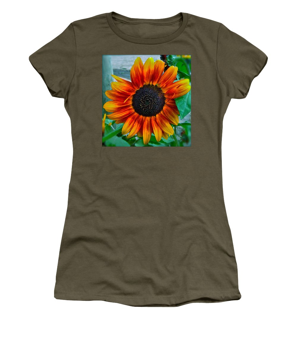 Sunflower Women's T-Shirt featuring the photograph Autumn Blessing by Gwyn Newcombe