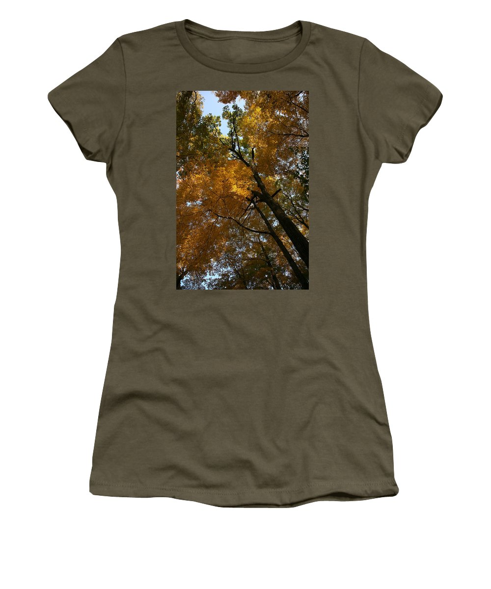 Autumn Fall Trees Orange Landscape Photography Photograph Digital Art Women's T-Shirt featuring the photograph Autumn Canopy by Shari Jardina