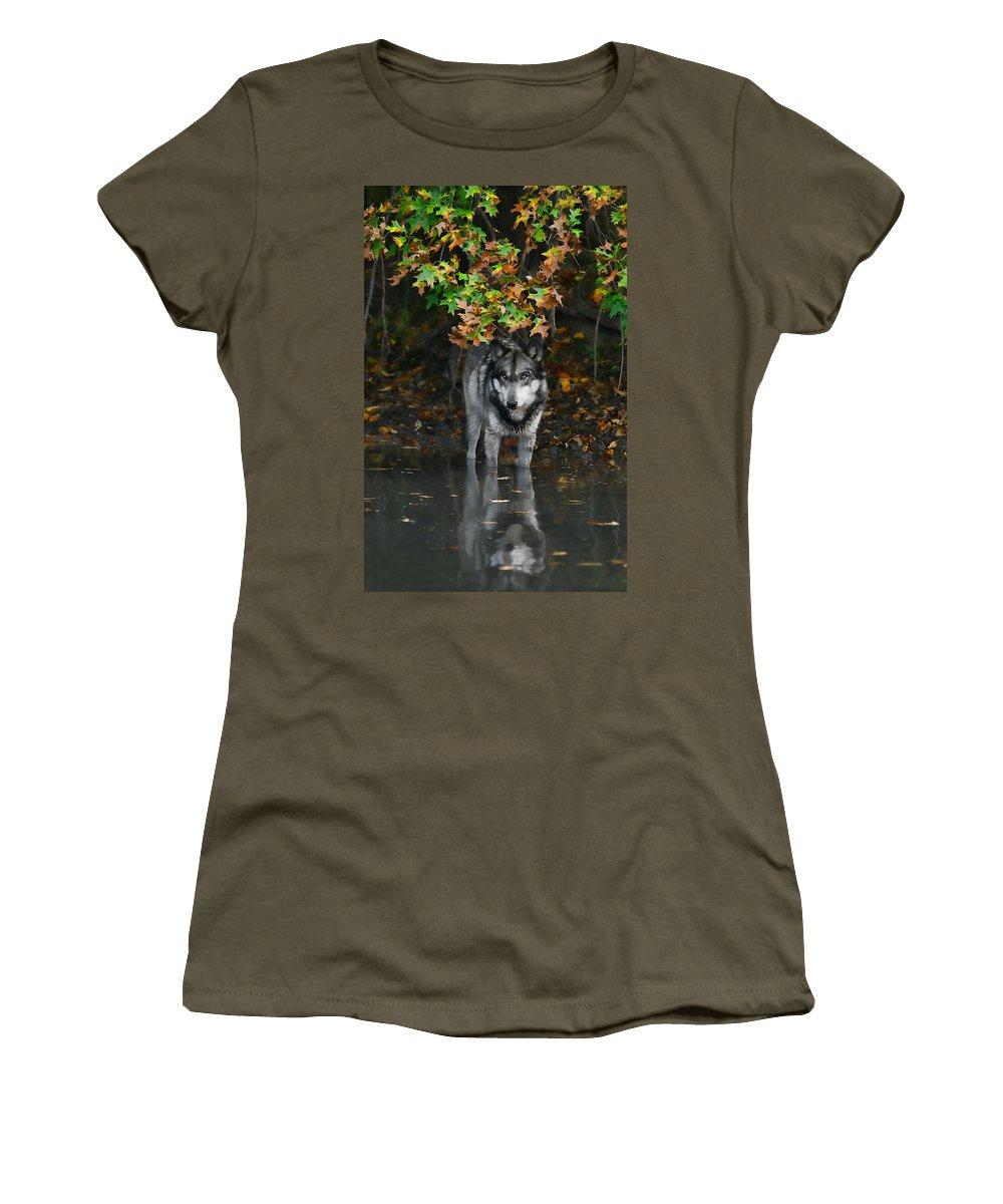 Wolf Wolves Lupine Canis Lupus Wildlife Animal Photography Photograph Women's T-Shirt featuring the photograph Autumn Wolf by Shari Jardina