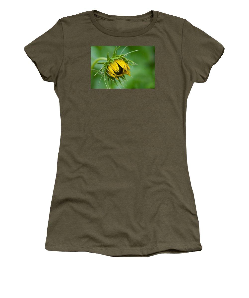 Sunflower Bud Opening Women's T-Shirt featuring the photograph Awakening by Diane Macdonald