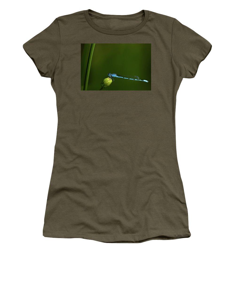 Azure Damselfly Women's T-Shirt featuring the photograph Azure Damselfly-coenagrion Puella by Onyonet Photo Studios