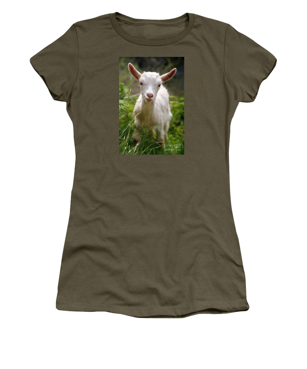 Animals Women's T-Shirt (Athletic Fit) featuring the photograph Baby Goat by Gaspar Avila