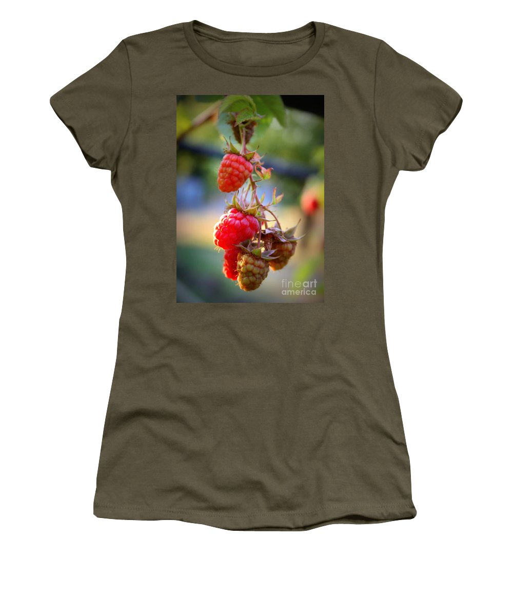 Food And Beverage Women's T-Shirt featuring the photograph Backyard Garden Series - The Freshest Raspberries by Carol Groenen