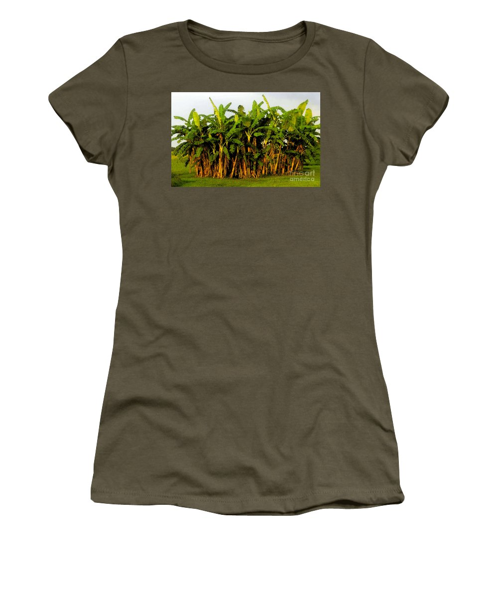 Banana Trees Women's T-Shirt (Athletic Fit) featuring the painting Banana Trees by David Lee Thompson
