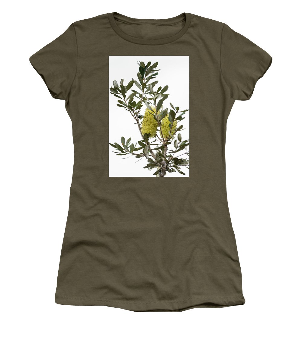 Coastal Banksia Women's T-Shirt (Athletic Fit) featuring the photograph Banksia Syd02 by Werner Padarin