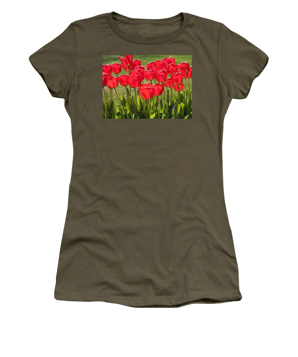 Tulips Women's T-Shirt featuring the photograph Basking In The Sunshine by Carol Groenen
