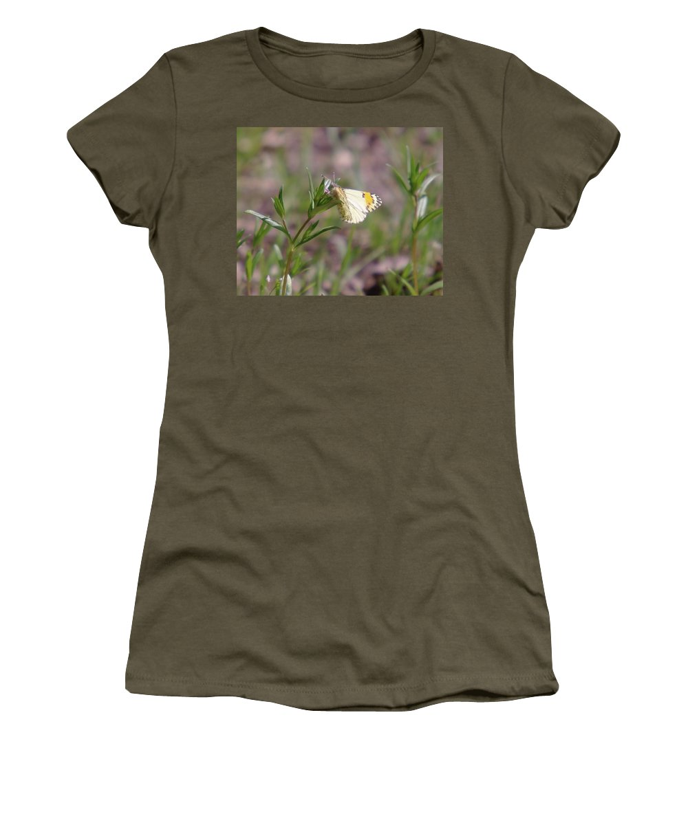 Moths Women's T-Shirt (Athletic Fit) featuring the photograph Basking In The Warmth by Jeff Swan
